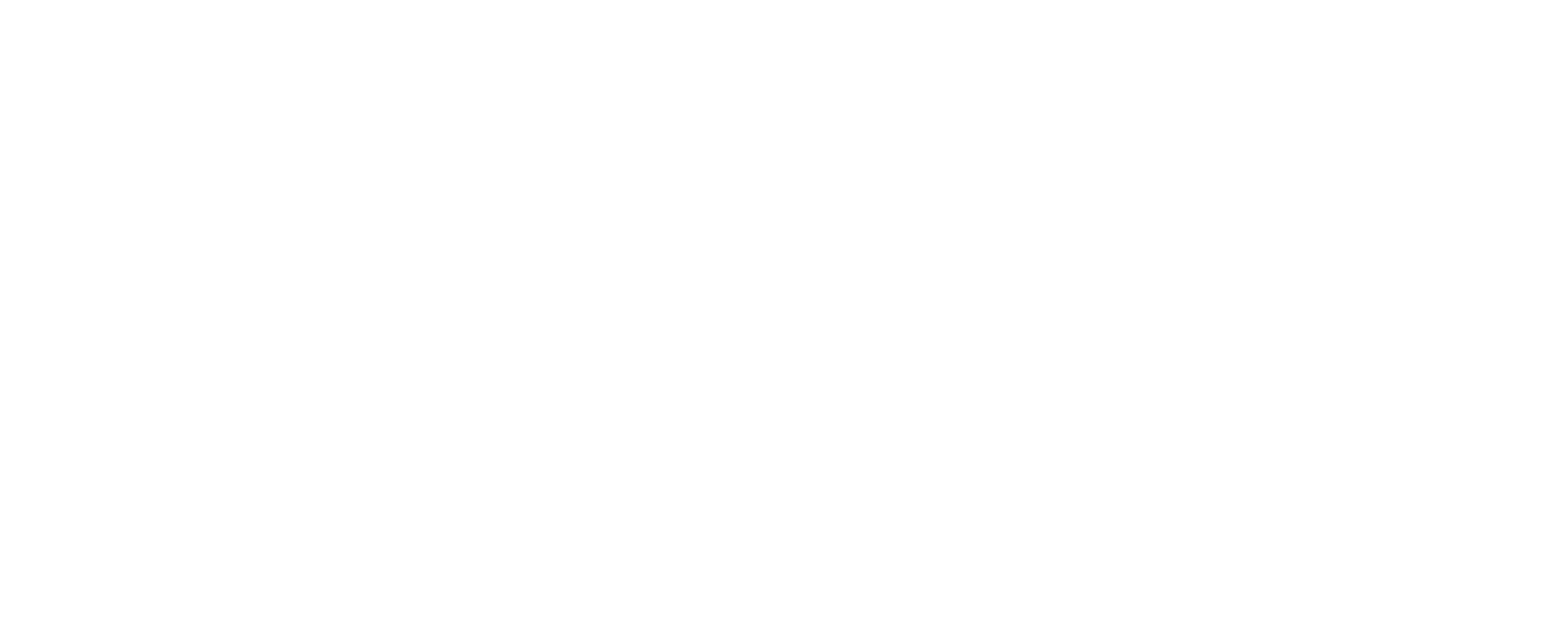 The Joy Within
