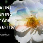 Kundalini Awakening What Are The Benefits?
